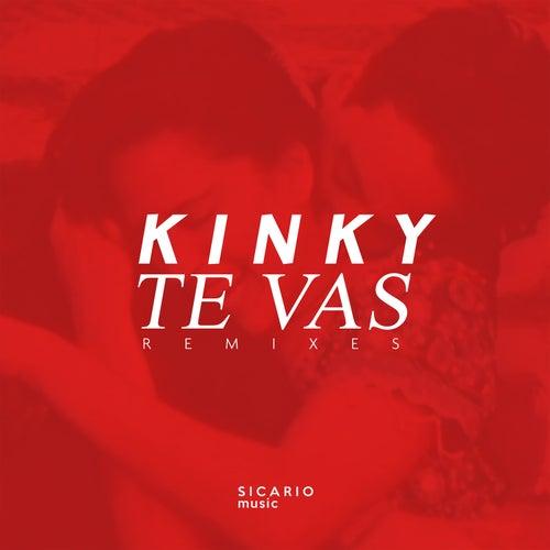 Te Vas Remixes de Kinky