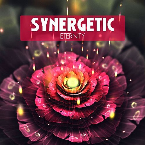 Synergetic Eternity by Various Artists