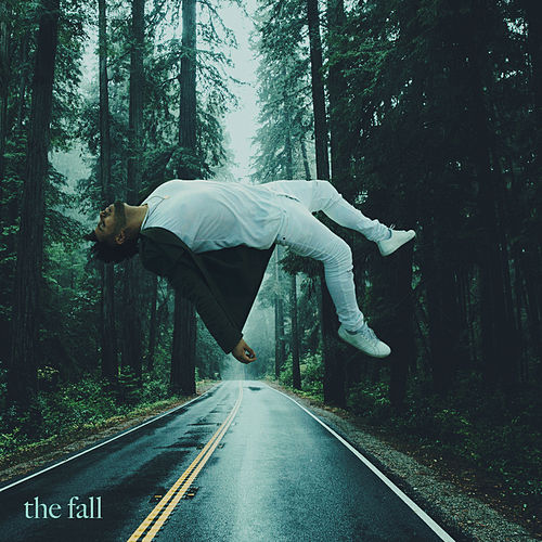 The Fall de Joey Vantes