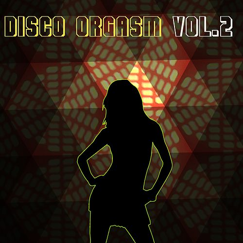 Disco Orgasm, Vol. 2 by Various Artists