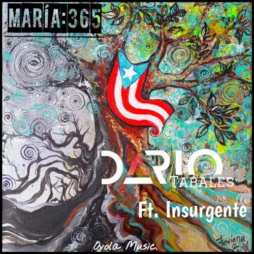 María: 365 (feat. Insurgente) by Darío Tabales