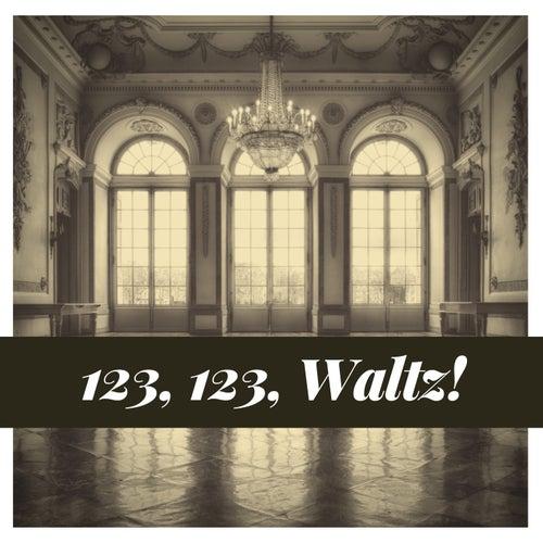 123, 123, Waltz! von Various Artists