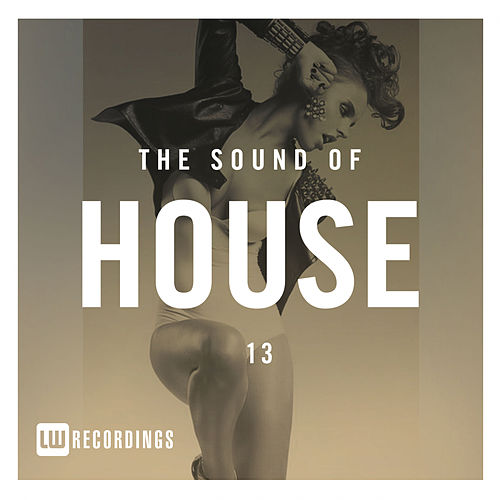 The Sound Of House, Vol. 13 - EP de Various Artists