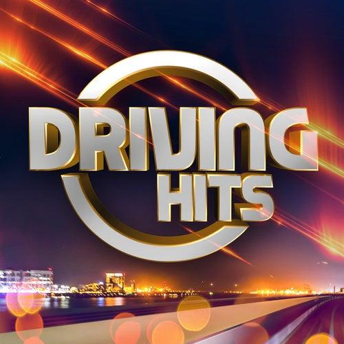 Driving Hits de Various Artists