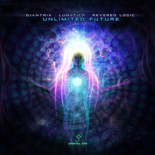 Unlimited Future de Various Artists