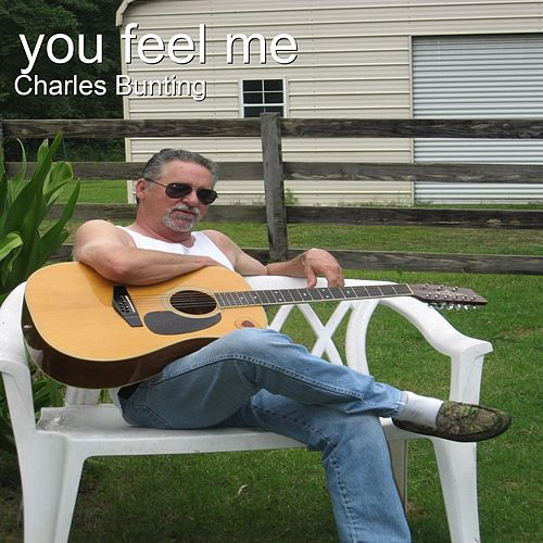 You Feel Me by Charles Bunting