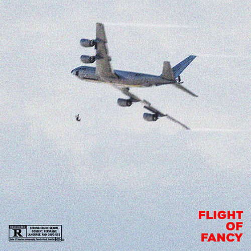 Flight Of Fancy von Edo Saiya