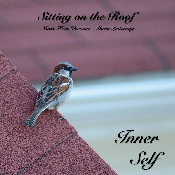 Sitting on the Roof - Noise Free Version - Mono    by