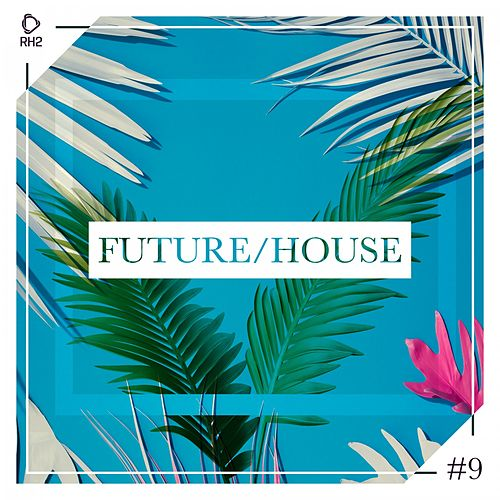 Future/House #9 de Various Artists