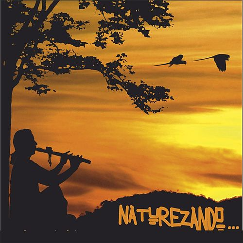 Naturezando by George Lucena