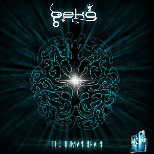 The Human Brain by Geko