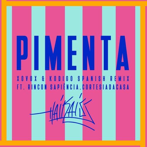 Pimenta (Spanish Remix) by Haikaiss