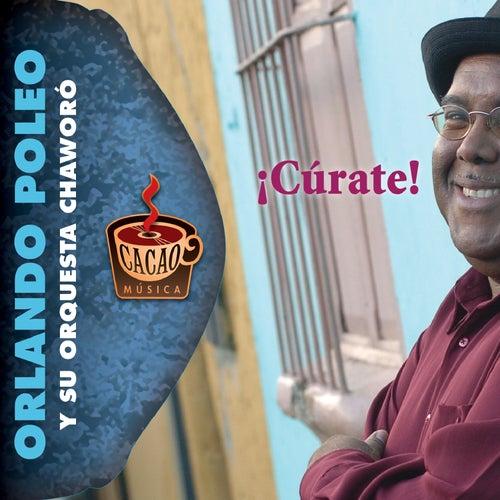 Curate! by Orlando Poleo