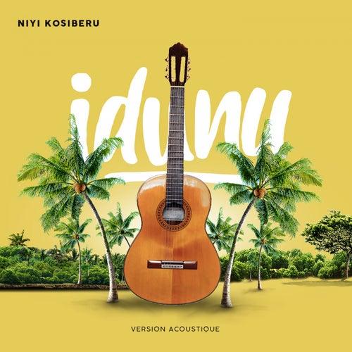 Idunu 2.0 (Acoustique) de Niyi Kosi'Beru