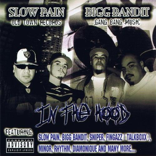 In the Hood de Various Artists