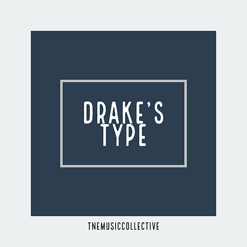 Drake's Type (Instrumental) de Trial and Error