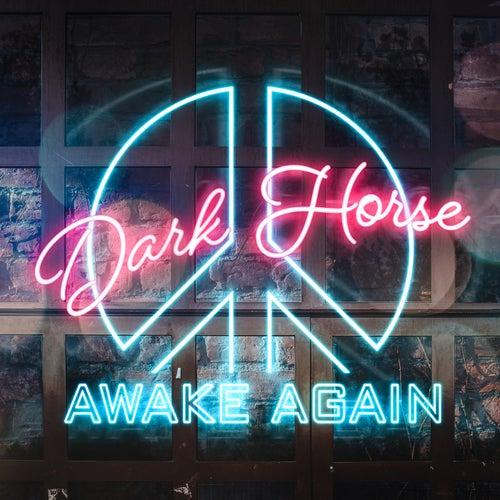 Dark Horse de Awake Again