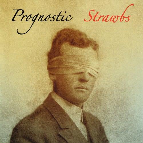 Prognostic de The Strawbs