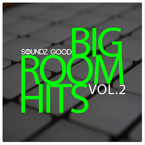 Big Room Hits Vol.2 de Various Artists