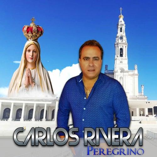 Peregrino by Carlos Rivera