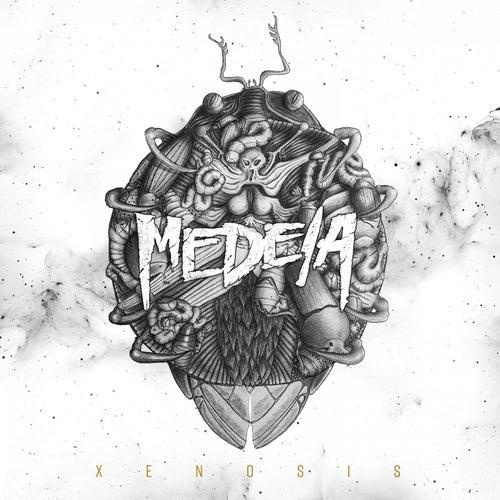 Xenosis by Medeia