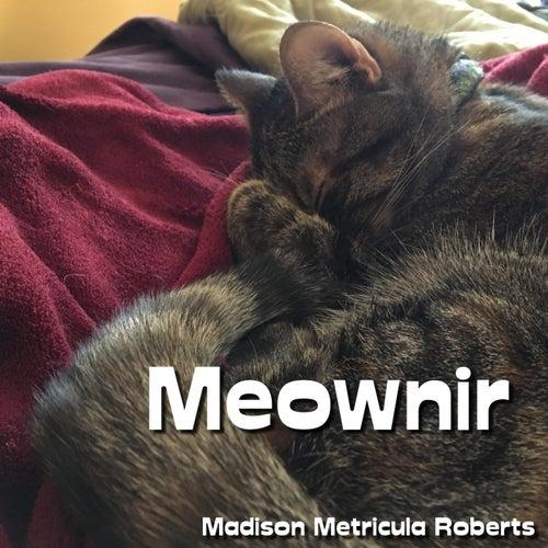 Meownir by Madison Metricula Roberts