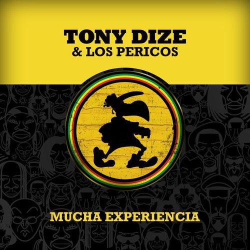 Mucha Experiencia de Tony Dize
