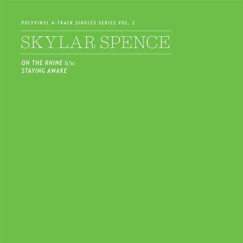 Polyvinyl 4-Track Singles Series, Vol. 2 von Skylar Spence