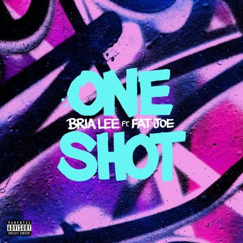 One Shot de Bria Lee