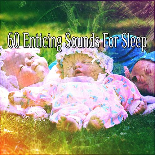 60 Enticing Sounds For Sleep by Sounds Of Nature