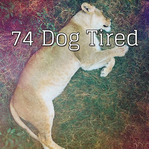 74 Dog Tired von Best Relaxing SPA Music