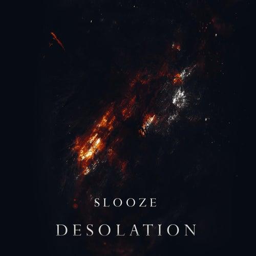 Desolation by Slooze