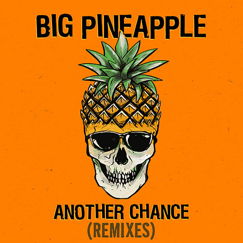 Another Chance (Remixes) von Big Pineapple