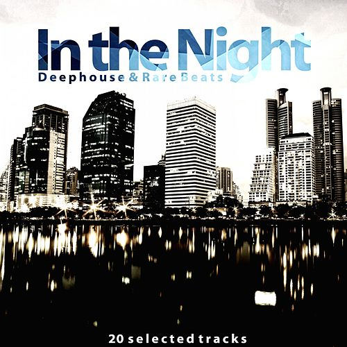 In the Night (Deephouse & Rare Beats) de Various Artists