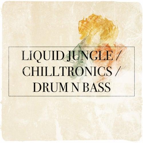 Liquid Jungle / Chilltronics / Drum N Bass by Various Artists