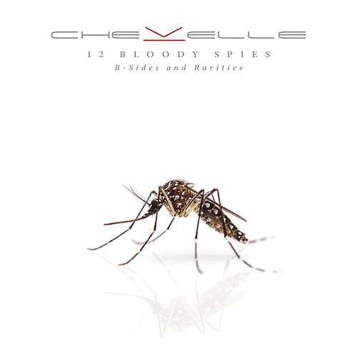 12 Bloody Spies: B-sides and Rarities de Chevelle