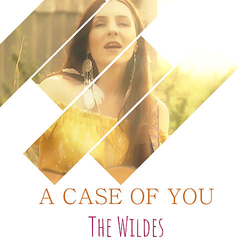 A Case of You by Wildes