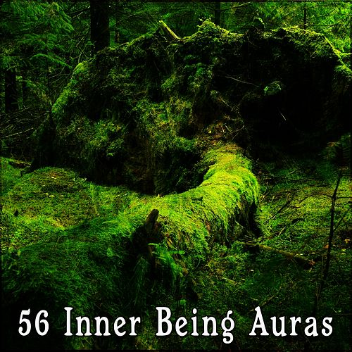 56 Inner Being Auras by Forest Sounds : Napster