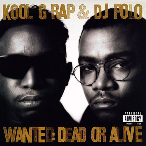 Streets of New York by Kool G Rap & DJ Polo