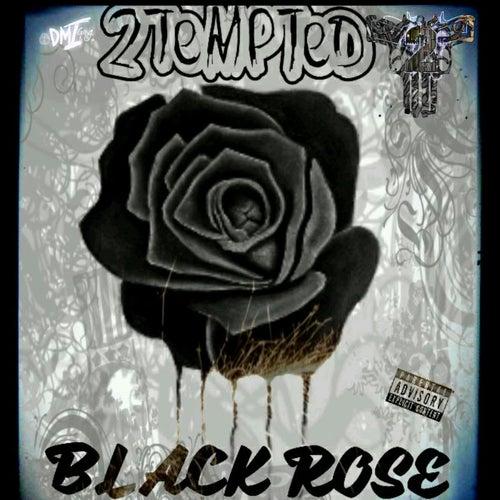 Black Rose de 2 Tempted
