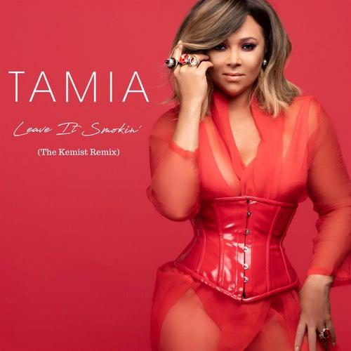 Leave It Smokin' (The Kemist Remix) by Tamia