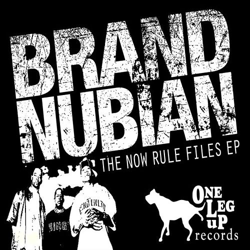 The Now Rule Files de Various Artists