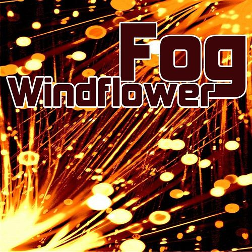 Windflower de Fog
