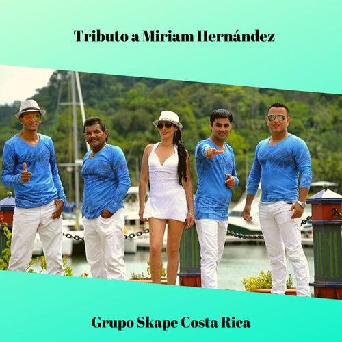 Tributo a Miriam Hernández de Grupo Skape Costa Rica