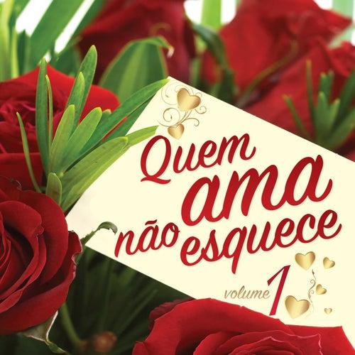 Quem Ama Não Esquece, Vol. 1 de Various Artists