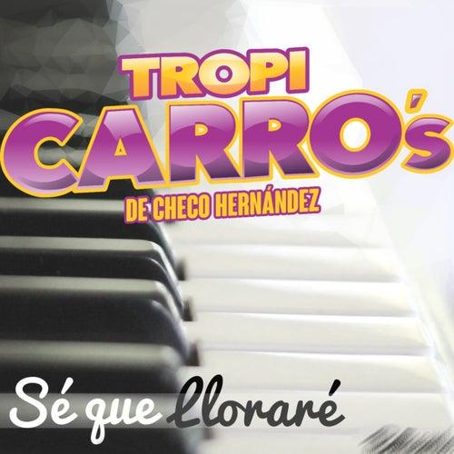 Sé Que Lloraré von Tropi Carro's De Checo Hernández
