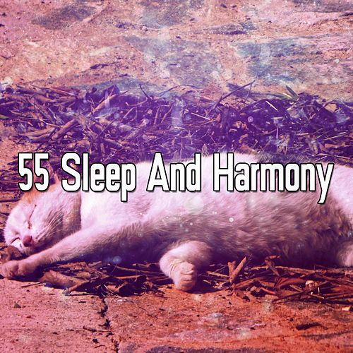 55 Sleep And Harmony by Relaxing Spa Music