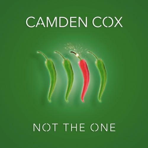 Not the One de Camden Cox