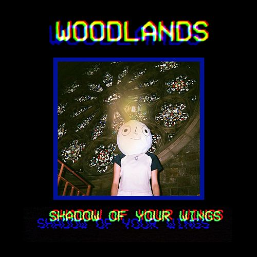Shadow of Your Wings by The Woodlands