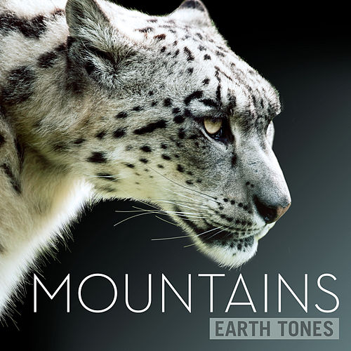Earth Tones: Mountains by Various Artists